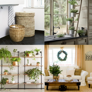 Bringing the Outdoors Inside images
